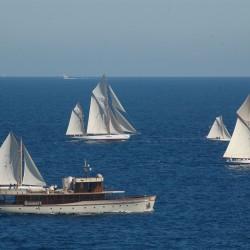 <b>Oriole (left, NY 11), Tigris (right, 49)</b> | Kamera: NIKON D70s | Brennweite: 210mm | Blende: ƒ/10 | Verschlusszeit: 1/320s |