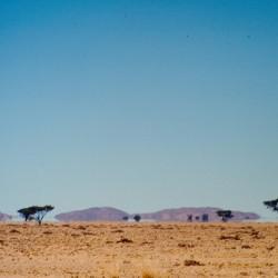 <b>Namib Naukluft National Park</b> | Kamera: NIKON D700 |  |  | Verschlusszeit: 1/100s | ISO: 200