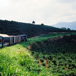 <b>Railway and coffee plantation</b> | Kamera: NIKON D700 |  |  | Verschlusszeit: 1/40s | ISO: 200