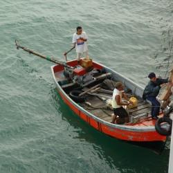 <b>Cilacap, Java, Indonesia</b> | Kamera: NIKON D70s | Brennweite: 70mm | Blende: ƒ/7.1 | Verschlusszeit: 1/125s |