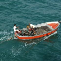 <b>Cilacap, Java, Indonesia</b> | Kamera: NIKON D70s | Brennweite: 70mm | Blende: ƒ/7.1 | Verschlusszeit: 1/400s |