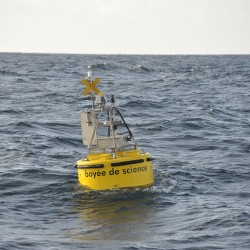 <b>Moored Buoy off Cape Blanc</b> | Kamera: NIKON D700 | Brennweite: 150mm | Blende: ƒ/6.3 | Verschlusszeit: 1/320s | ISO: 200