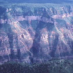<b>Grand Canyon (northern rim)</b> |  |  |  |  |