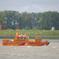 <b>Bremerhaven, Germany</b> | Kamera: NIKON D610 | Brennweite: 500mm | Blende: ƒ/6.3 | Verschlusszeit: 1/800s | ISO: 200